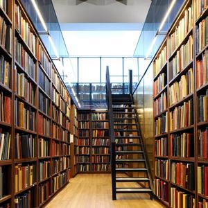 Библиотеки Камбарки